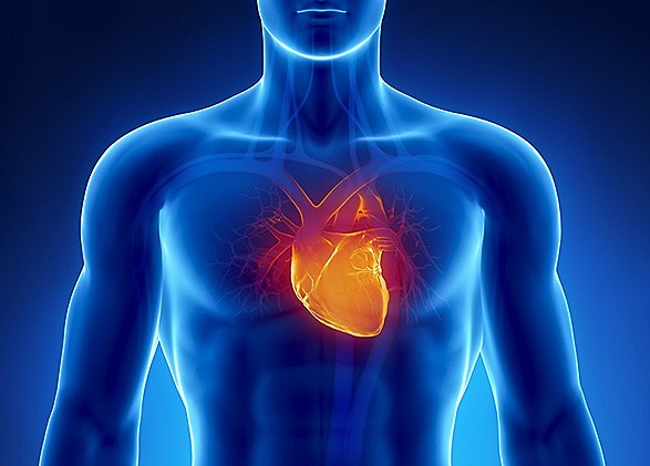 PEMF8000 Heart-Conditions pemf8000